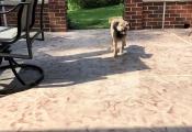 concrete patio resurfacing los angeles