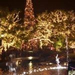 Winterwonderland LA