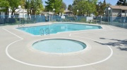 Los Angeles Concrete Pool Decks
